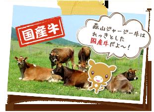 【国産牛】蒜山ジャージー牛はれっきとした国産牛だモォ〜!